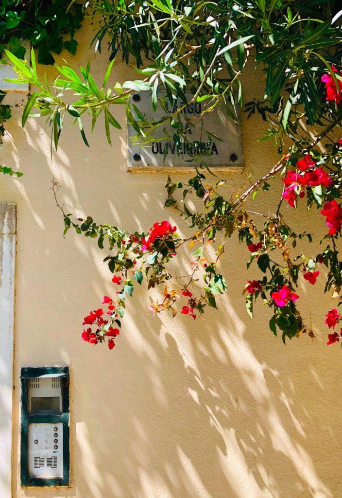 Guide D Achat Immobilier Au Portugal Suivez Le Guide